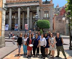 Mexico global lawyering 2019